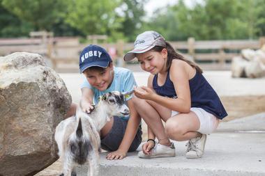 Parc animalier d'Isle a Saint-Quentin