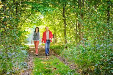 Rando en forêt de Saint-Gobain < Aisne