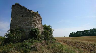 Moulin de Roucy 2019 < Roucy < Aisne < Picardie