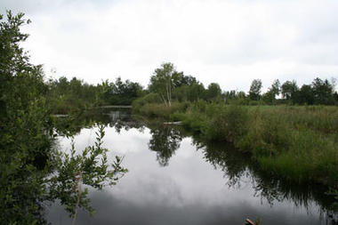 Sortie nature marais < Liesse-Notre-Dame < Aisne < Picardie