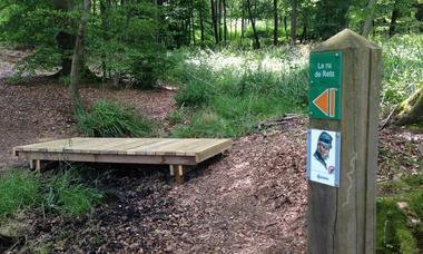 balade de 14 à 18 en forêt de Retz © OT Villers-Cotterêts(3)