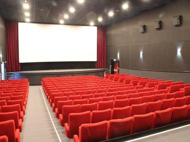 Cinéma La Cane à Montfort sur Meu