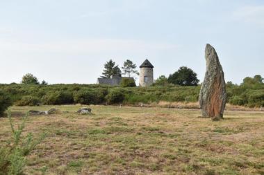 Maison Mégalithes et Landes