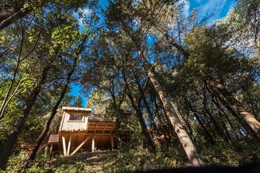 Cabanes dans les bois - Villalier_10