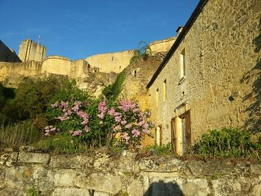 Façade arrière_Vue sur le Château_ Le Manoir de Carlux redim