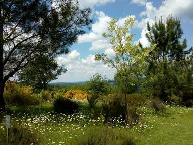 PCU-Jardins-de-Haute-Terre--8-