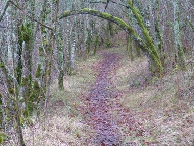 Sentier du Sentier des Fontaines
