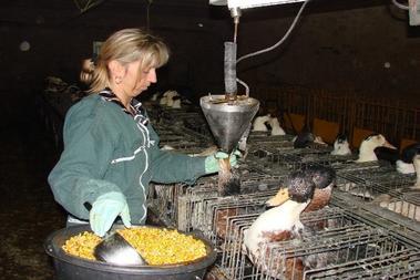 Foies gras Jardel