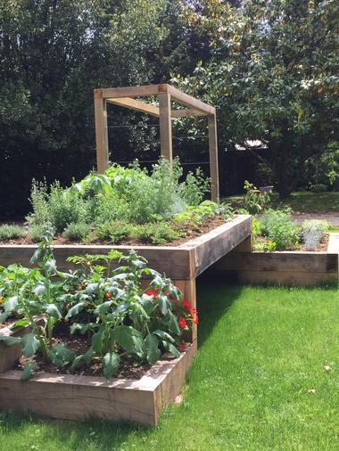 Le jardin des plantes aromatiques