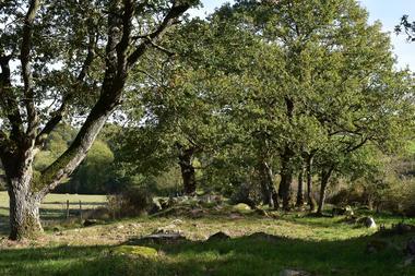visites-guidees-esiam-rochers-graves-vaux-st-aubin-de-baubigne.jpg_3
