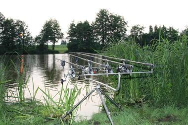 Pêche sportive de l'Etang de Rouge