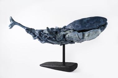 Baleine Georgin Florian
