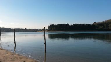 Marie-pierre-bosle-lagune