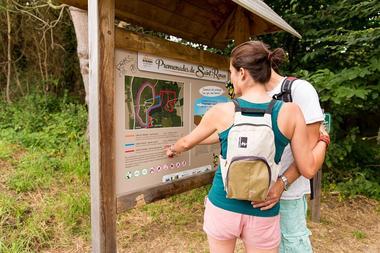 Bois de Saint Ronan - Plozevet - Pays Bigouden-1