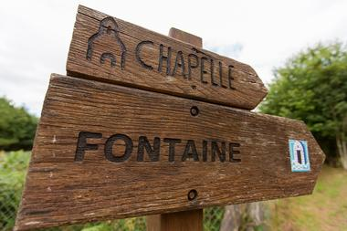Bois de Saint Ronan - Plozevet - Pays Bigouden-3
