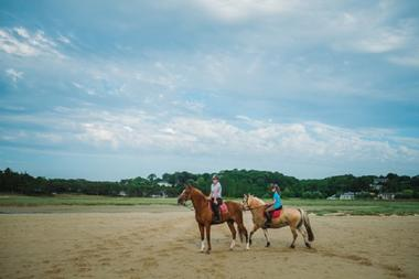 Equitation 2016 (2)