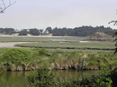 Au départ du marais de Sables d'Or-les-Pins