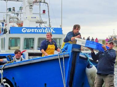 Port de pêche du Guilvinec - Pays Bigouden 4 ©Perla Negro (2)