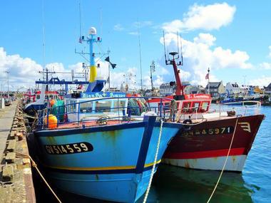 Port de pêche du Guilvinec - Pays Bigouden 7 ©Perla Negro (1)