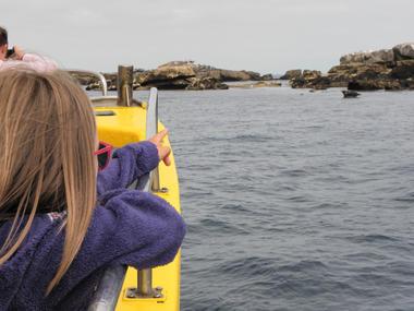 4 Balades et pêche en mer - Guilvinec - Pays Bigouden