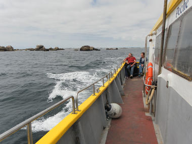 5 Balades et pêche en mer - Guilvinec - Pays Bigouden