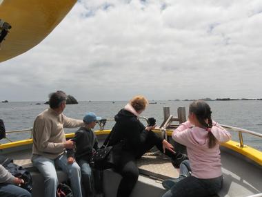7 Balades et pêche en mer - Guilvinec - Pays Bigouden