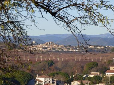 Ot-Avant-Mont-DEBERGUES-Chambre-d-hotes-les-Amandiers-vue