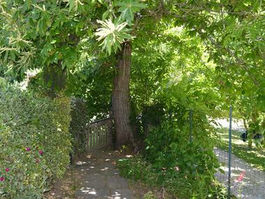 Auxpetitsmarrons-jardin