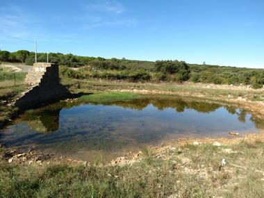 Assignan Mare Natura 2000