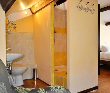 Salle de douche attenant à la chambre