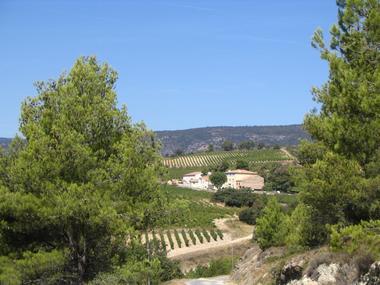 DEGLAR034FS001CA - Château Sainte Eulalie