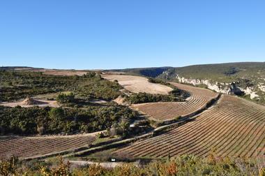 Rouanet-Montcélèbre - vigneron -  Cesseras - Minervois
