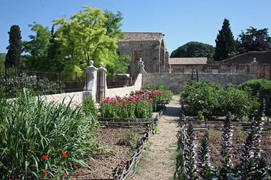 Jardin médiéval (1)