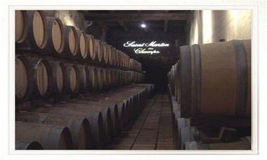 St martin des champs à Murviel les Béziers -3