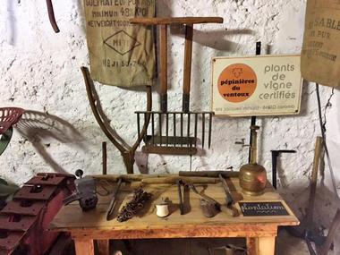 musee-vigne1