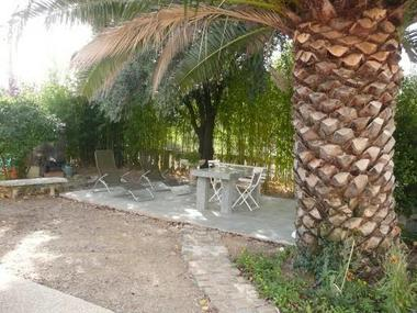Espace détente sous le palmier.