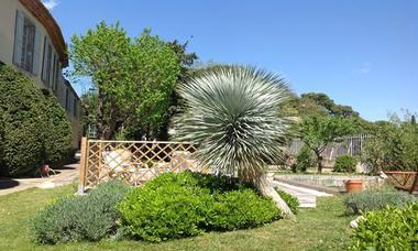 chateau de siran : vue sur le jardin