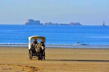 Les chevaux de a mer à Saint-Malo