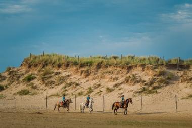 Equitation 2016 (1)