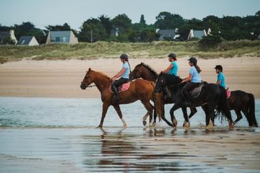 Equitation 2016 (3)
