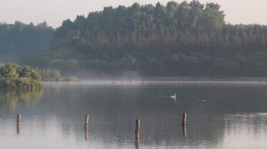 Forêt Iffendic chambre au loup domaine de Careil et boutavent ©office de tourisme Lac de Trémelin (6)