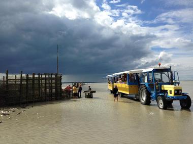 « Arrivée à la pêcherie, relève quotidienne » Cherrueix, Baie du Mont Saint Michel