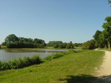L'étang du Blavon à Bédée