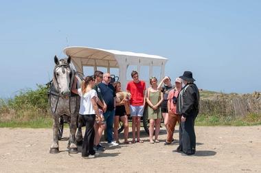 Les chevaux de la mer - Saint-Malo - Lavenan