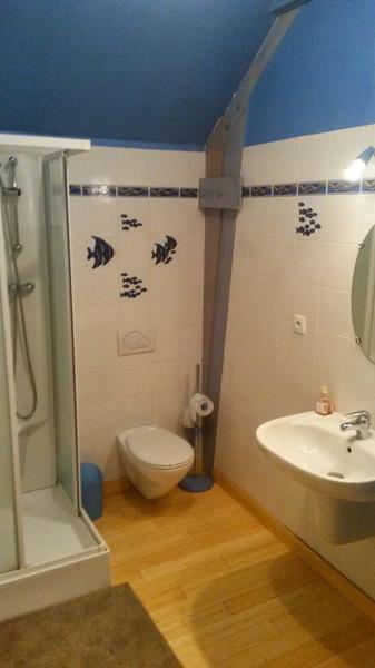 Logis du ricotay salle de bains
