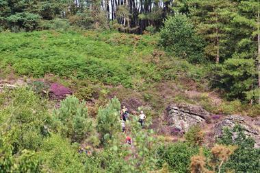 Vallon de la chambre au Loup Iffendic Brocéliande Bretagne ©office de tourisme lac de Trémelin (2)