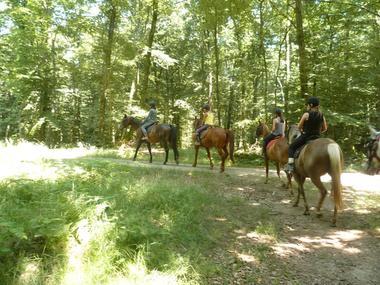 balade avec la ferme équestre-Les Sabots de Villecartier1