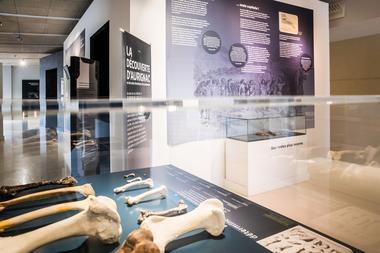 Musee-Aurignacien-