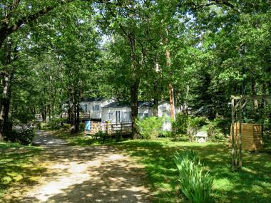 Camping En Salvan 3