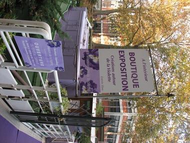 maison violette TOULOUSE